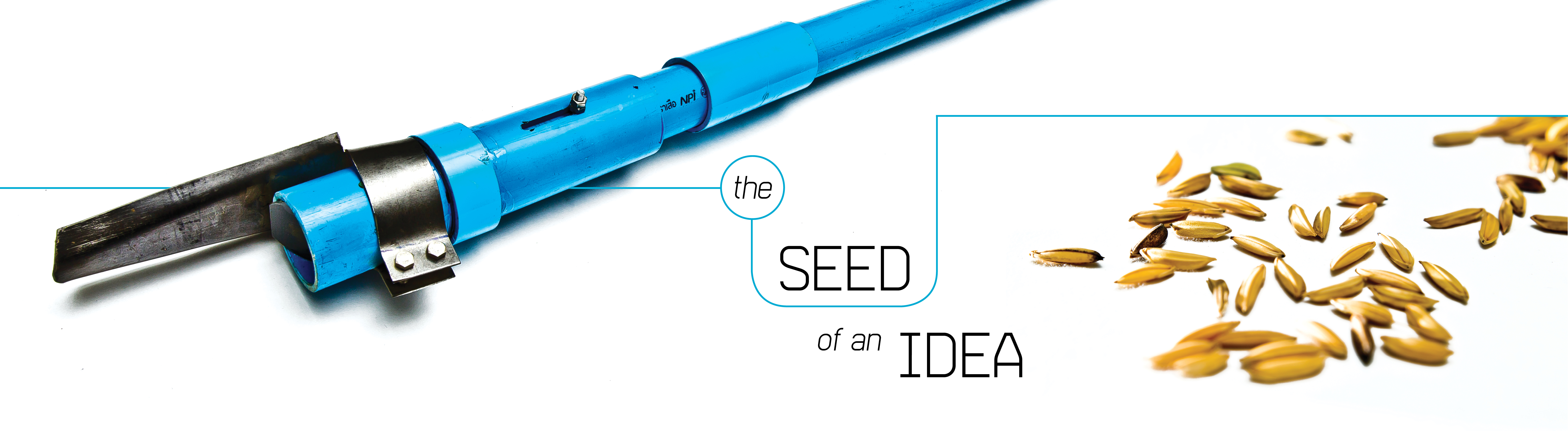 The Seed of an Idea
