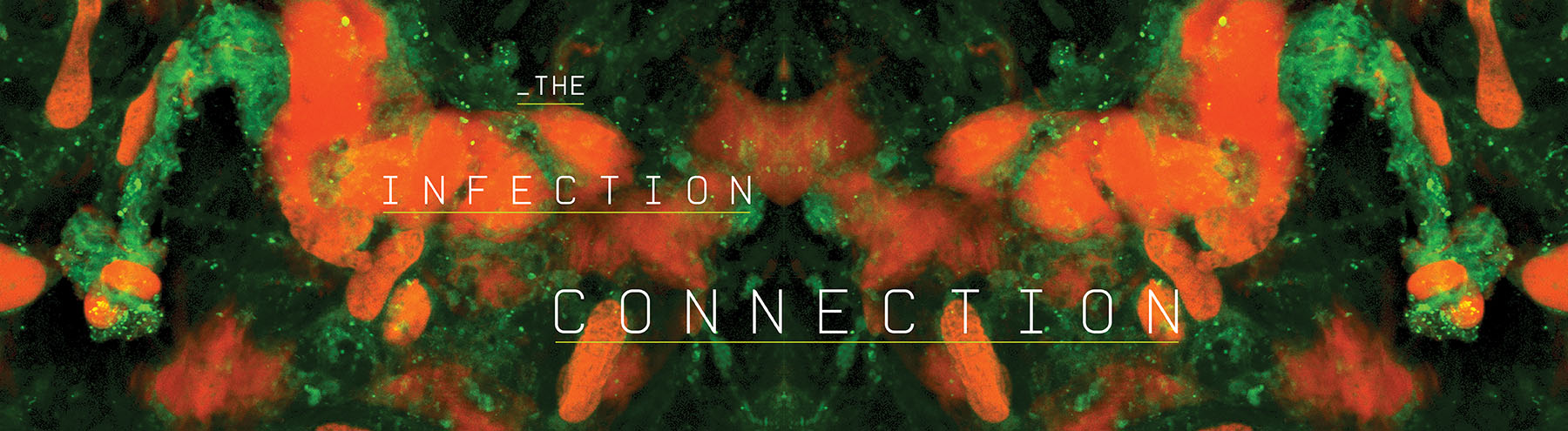 The Infection Connection