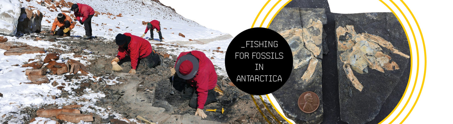 Fishing for Fossils in Antarctica