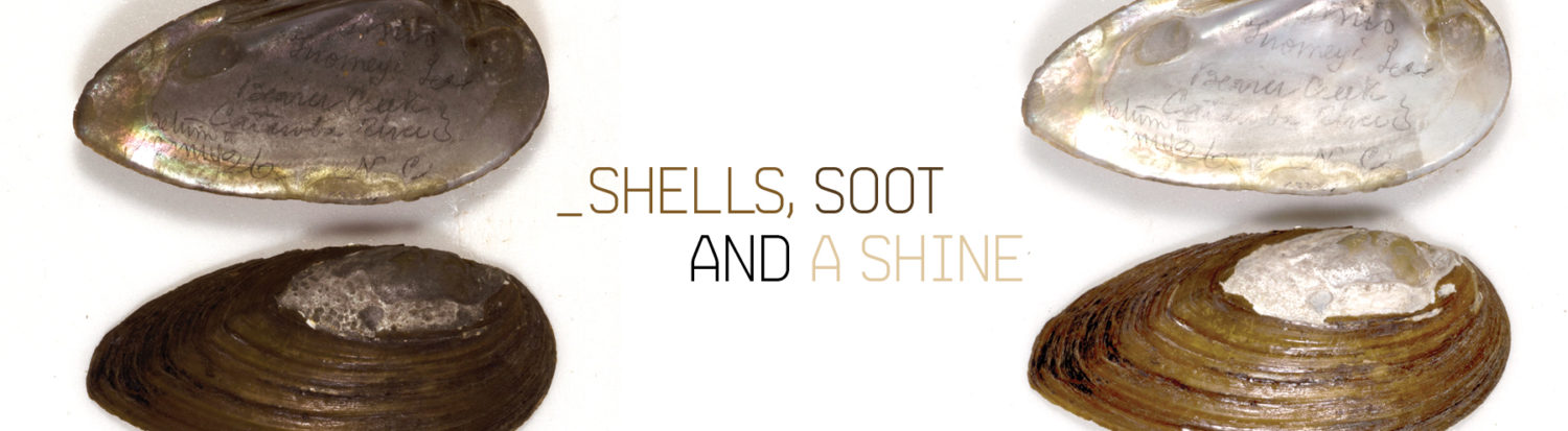 Shells, Soot and a Shine